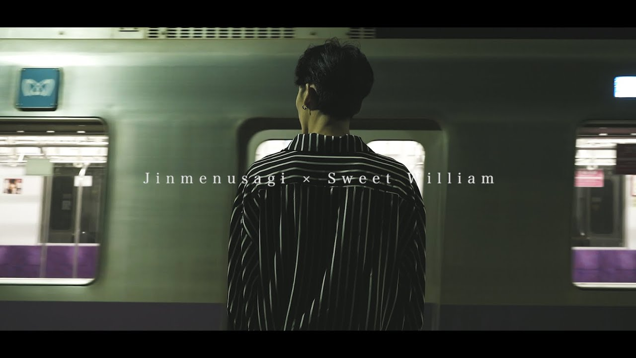 Sweet William & Jinmenusagi : so goo
